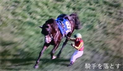 ダンビュライトが(ある意味)一番人気!見せ場を作った秋の天皇賞!uma2
