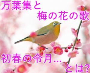 万葉集と梅の花の歌「初春の令月…」 はどんなもの?意味や内容は?