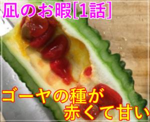 凪のお暇[1話] ゴーヤの種が赤くて甘い!ゴンの黄色いラッキーゴーヤ